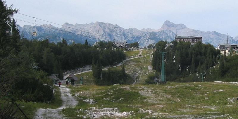 Vogel Slovenija